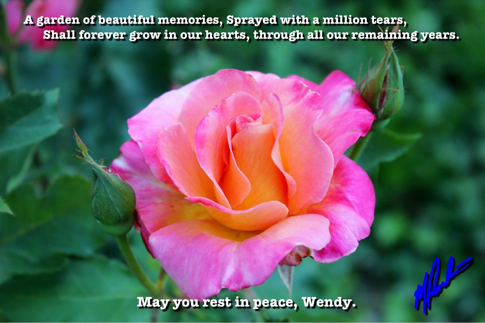 wendy-tribute